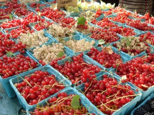 Currants at Union Square Greenmarket