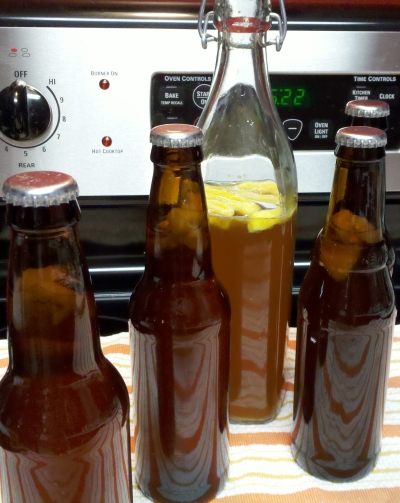 Bottled kombucha. Make your own kombucha